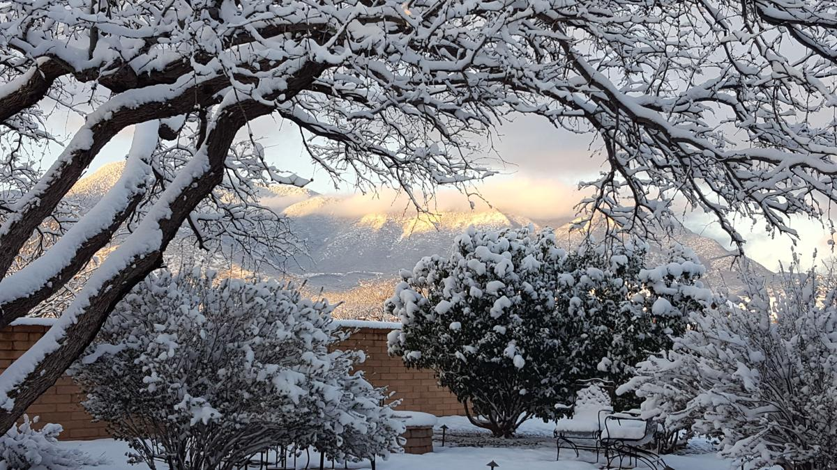 Views of Cochise County: Readers send in snow photos