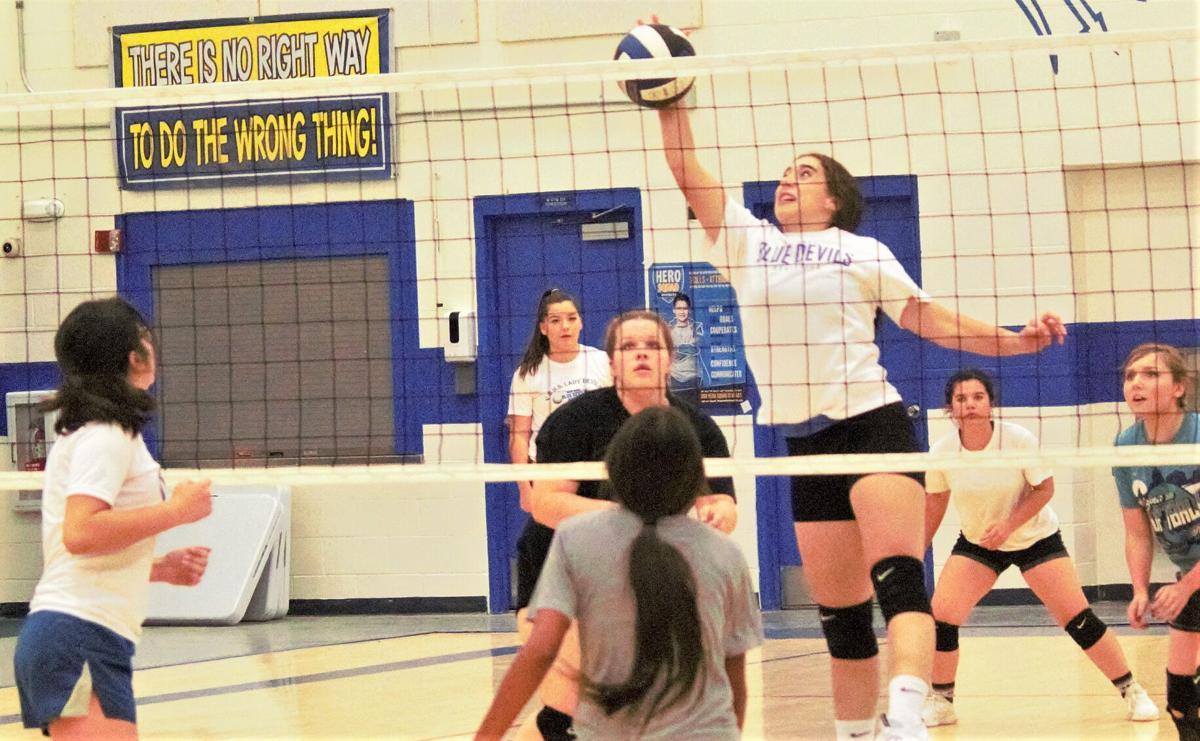 VU volleyball 2.jpg