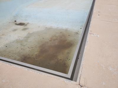 bowie pool