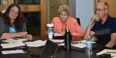 County administrator job draws 17 letters of interest (copy