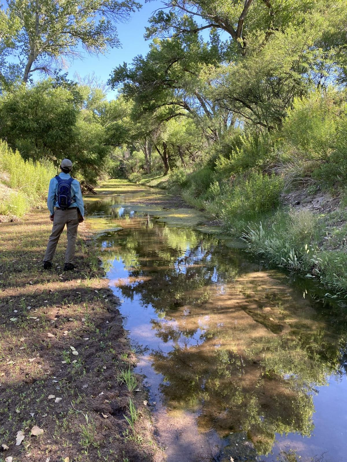 22nd annual wet/dry mapping of San Pedro