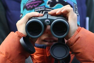 Napa County Christmas Bird Count for Kids (copy)