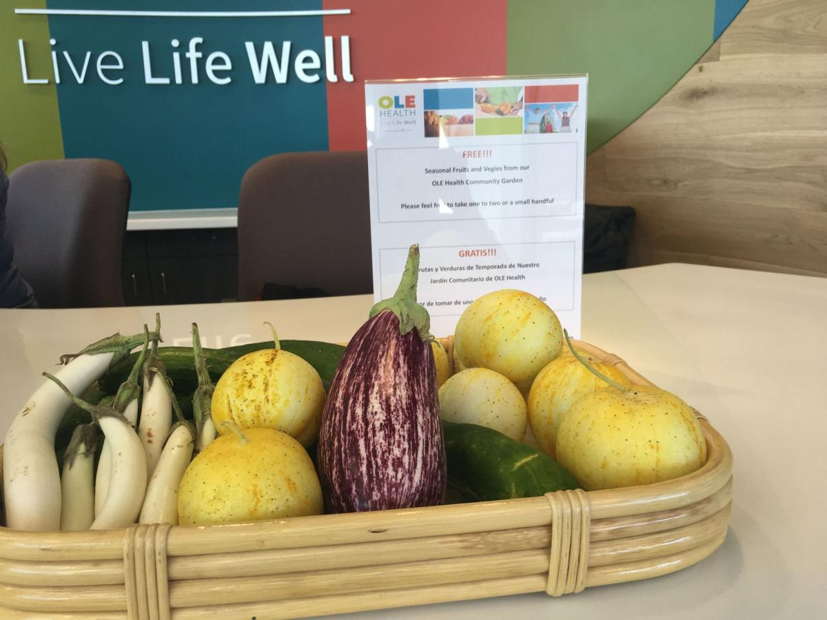 A basket of some food grown in the new community garden at OLE Health