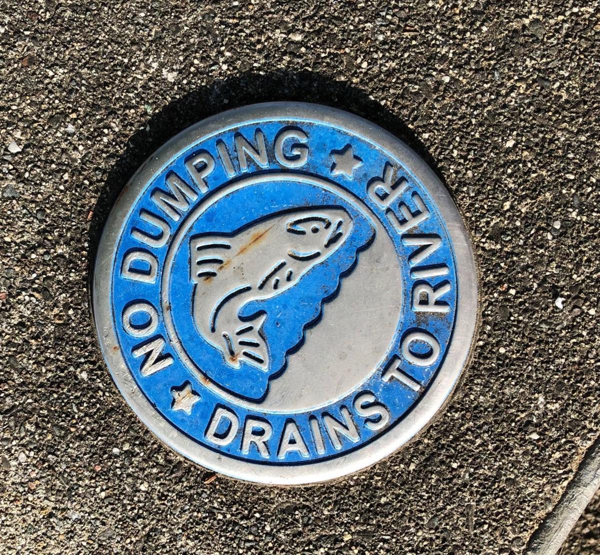 No Dumping medallion