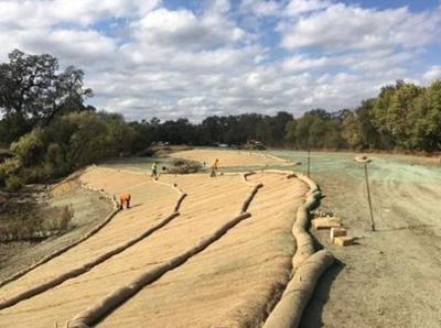 Oak Knoll Reach restoration