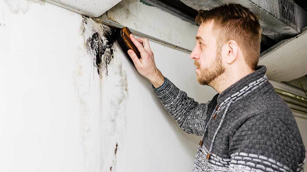The most common cause of mold growth in the home is water leaks, such as from a plumbing leak or water damage after a storm.