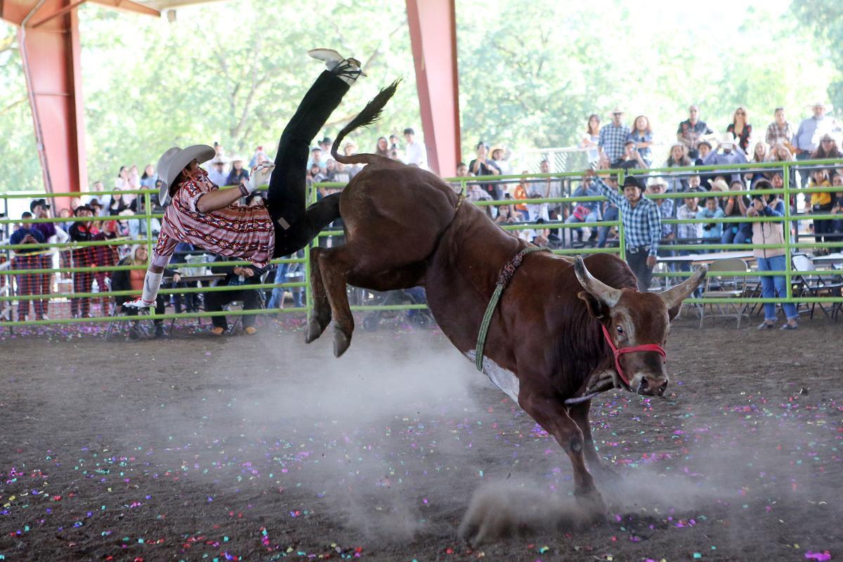 Fair & Fiesta in Calistoga