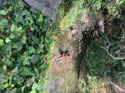 Napa Creek rescue