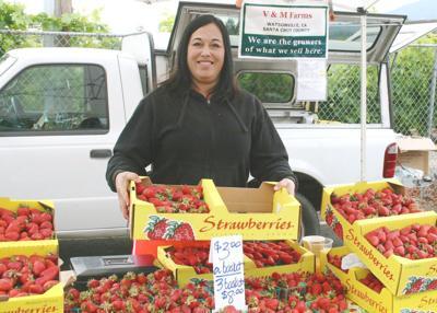 Rachel Rosen, V&M Farms