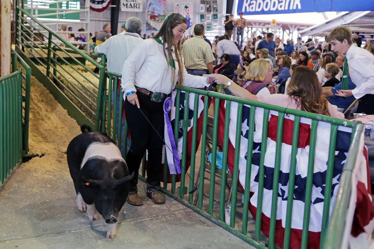 Junior Livestock Auction 2017