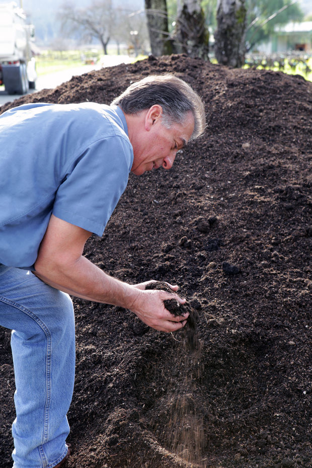 Cover crops and compost