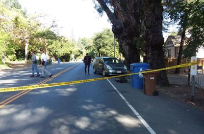 Pedestrian fatality on Foothill Boulevard