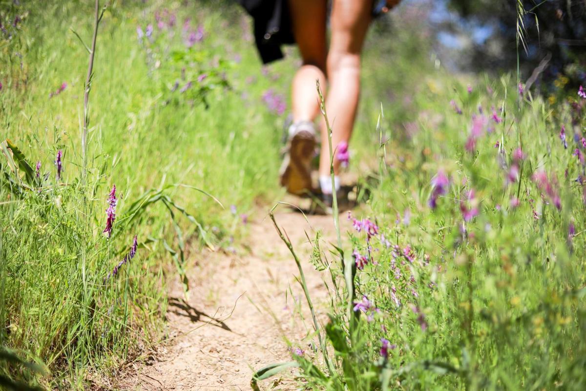 Hiking on Oat Hill Mine Trail