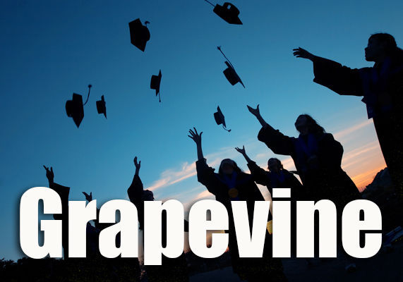 nvr-stockart-grapevine4