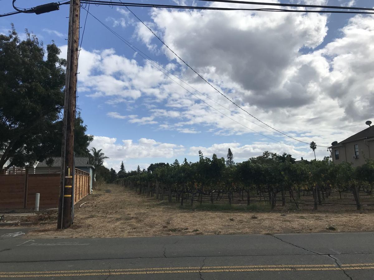 Home Ranch Vineyard