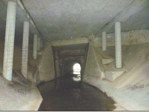 Suscol Creek fish passage