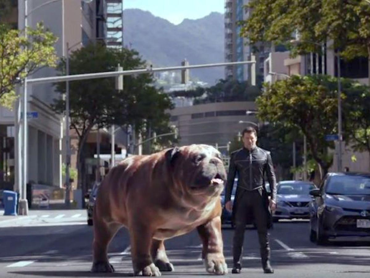 The irregular presence of Lockjaw in MCU's Inhumans adaptation - making it a controversy.