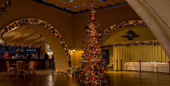Robert Mondavi Winery Tree Lighting