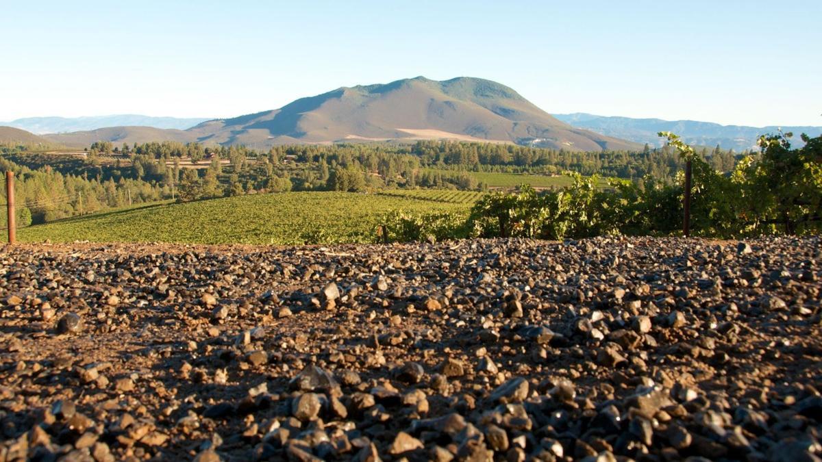 Obsidian Ridge Vineyard - Landscape