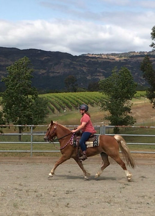 Napa's best equestrian trails