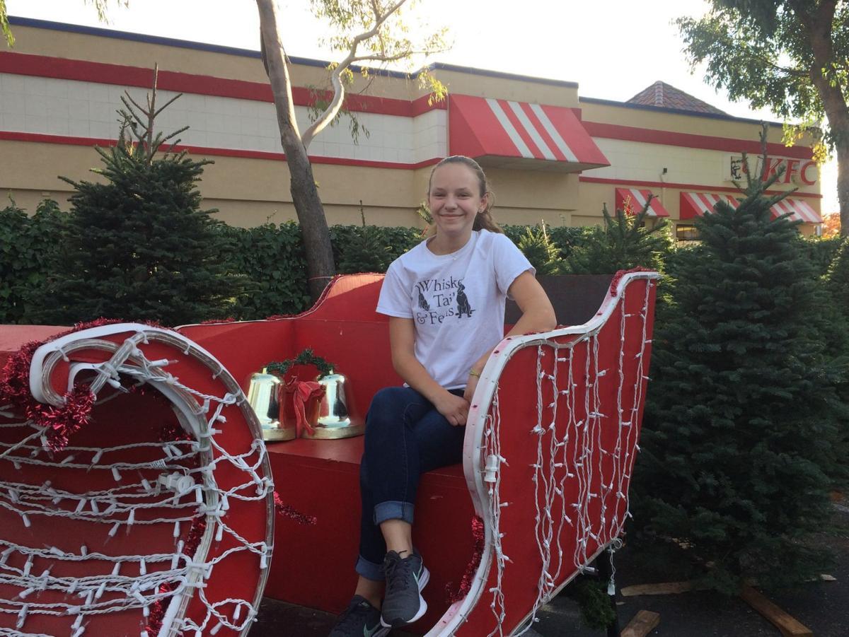 tree sleigh
