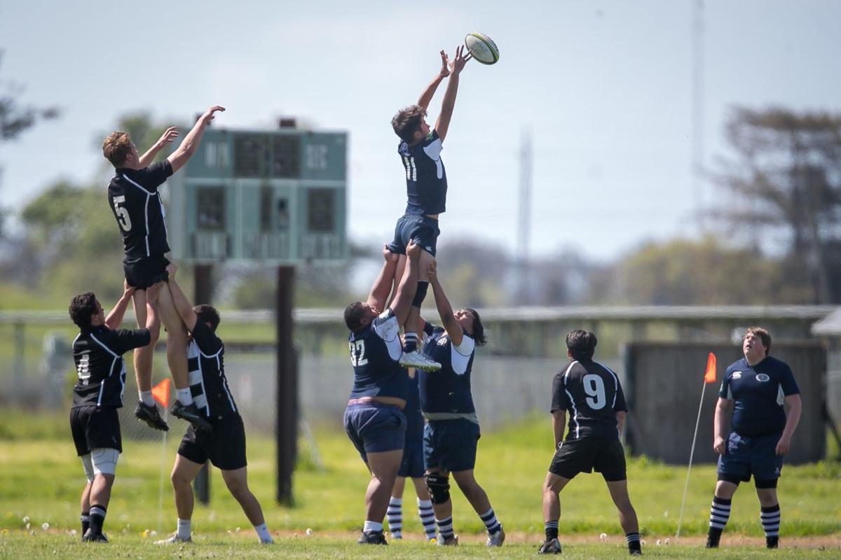 Napa Stormers rugby