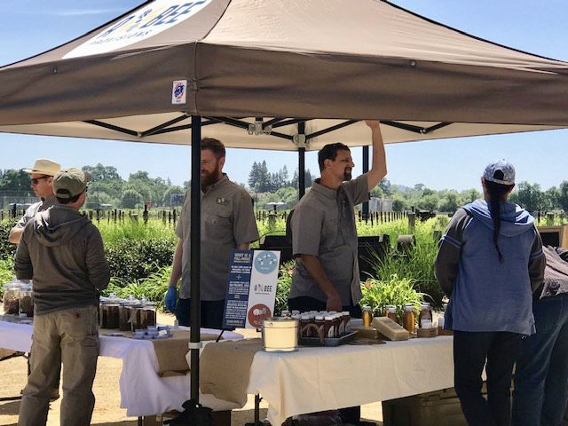"Staffers from A & Bee Provisions recently hosted a ""Beekeeping Day"" at Pestoni Family Estate Winery"