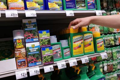 Glyphosate herbicide (copy)