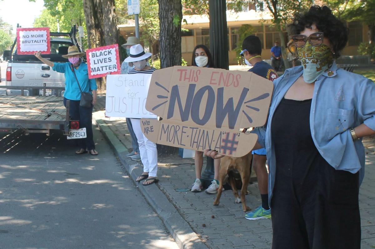 Demonstration at Lyman Park