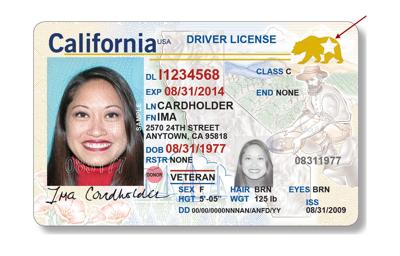 REAL ID Driver License
