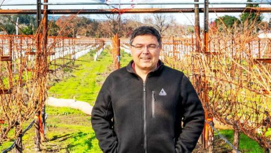 Global warming challenges Napa Valley grapegrowers to find answers - Napa Valley Register