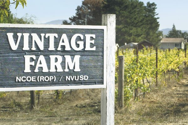 Vintage Farm moving to new location