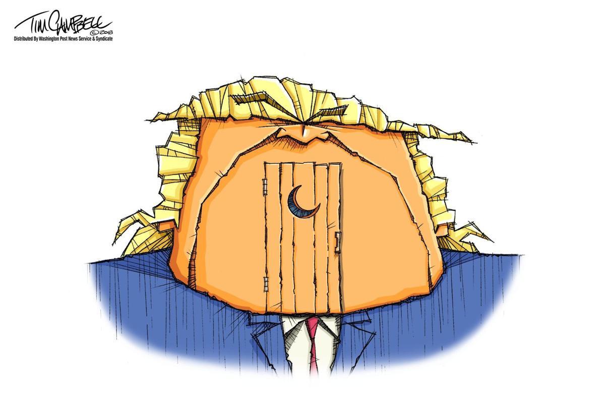Tim Campbell cartoon