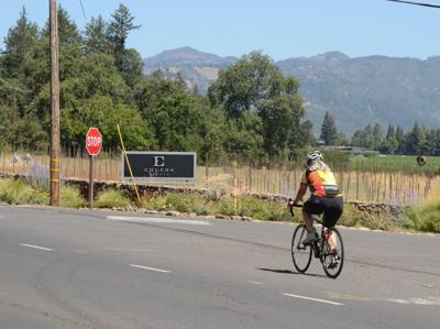 Vine Trail proposed crossing