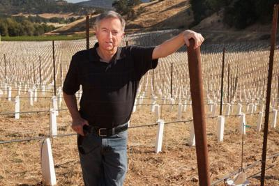 Mitch Cosentino is the founder-winemaker of pureCru Winery and winemaking consultant for J. McClelland Cellars and O'Connell Family Wines.