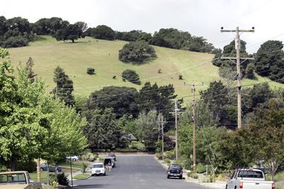 Napa Oaks II site