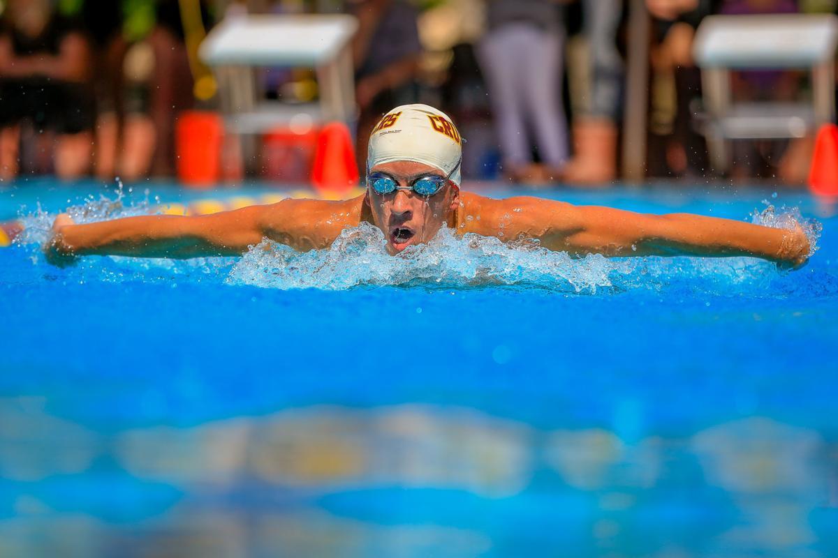 VVAL Swim & Dive Championships