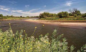 Tuolumne River near the confluence with the San Joaquin. Photo via River Partners