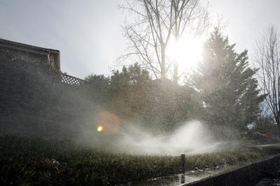 Lawn watering restrictions in Napa