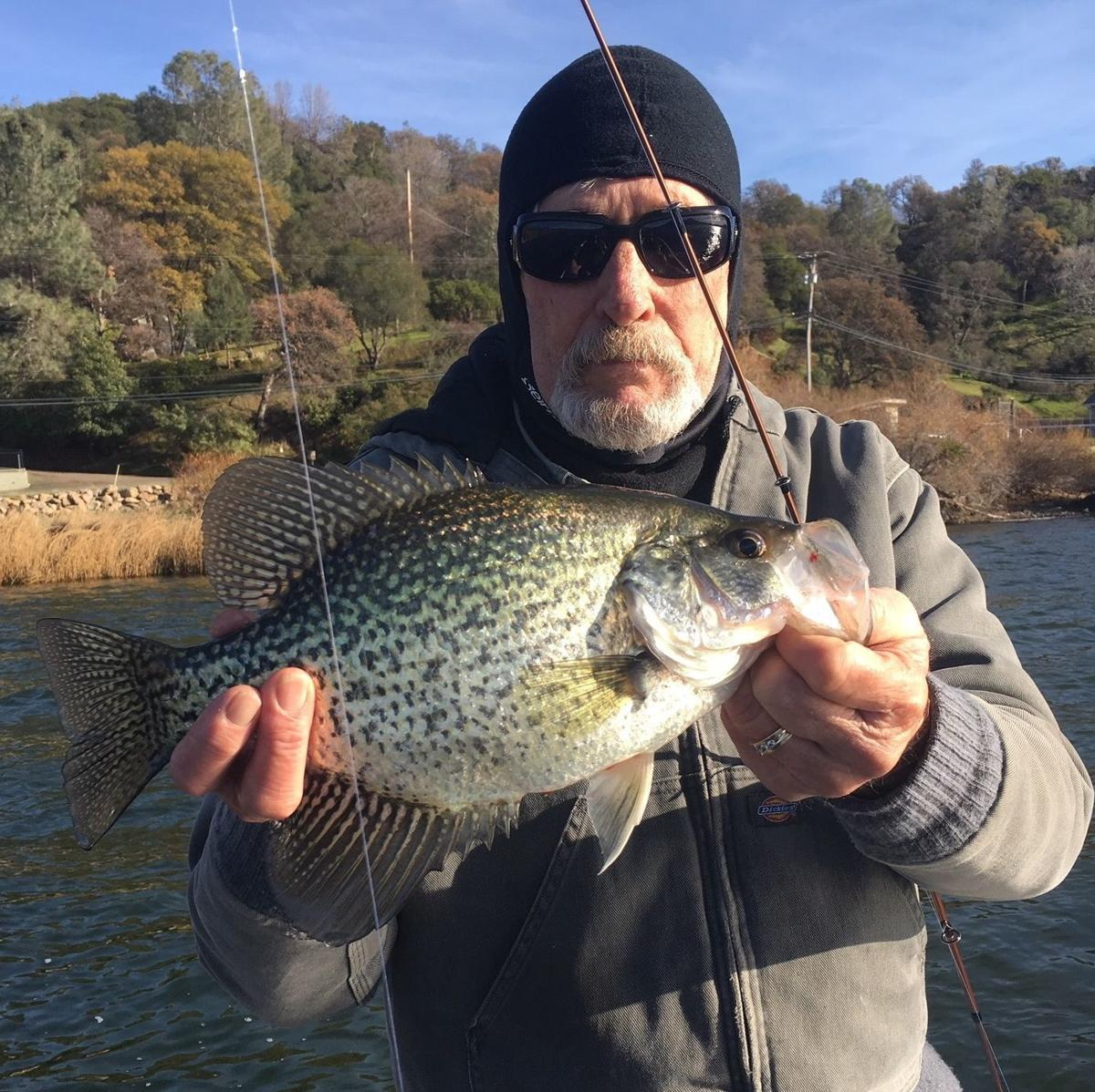 Napa Valley Fishing Report: More crappie and bluegill than