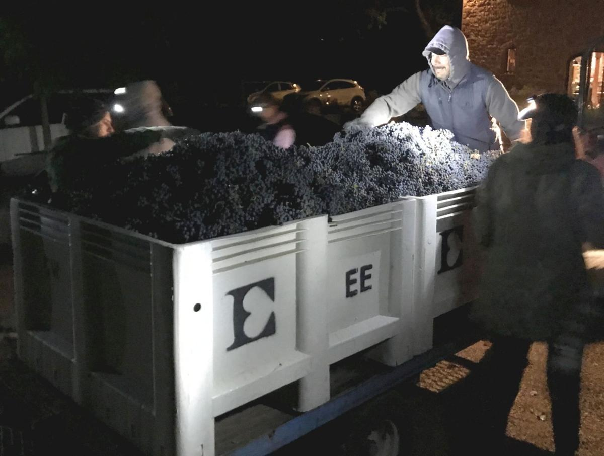 Ehlers Estate, Harvest 2017