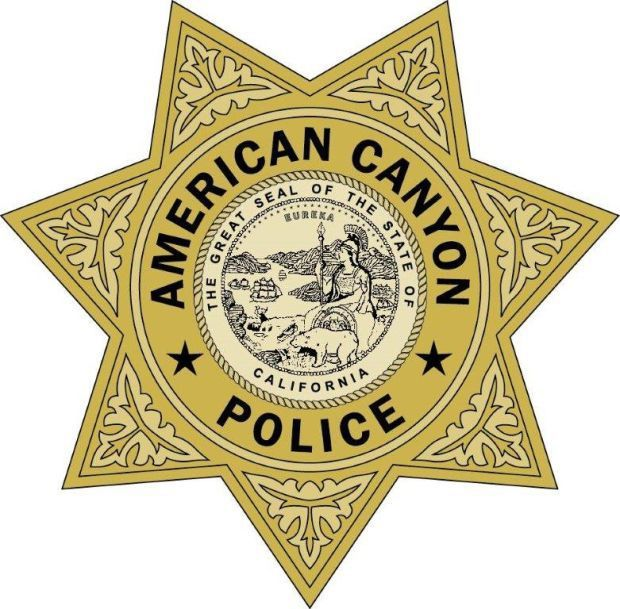 America S Police News: Vehicle Crashes Into Light Pole, Delays Traffic In