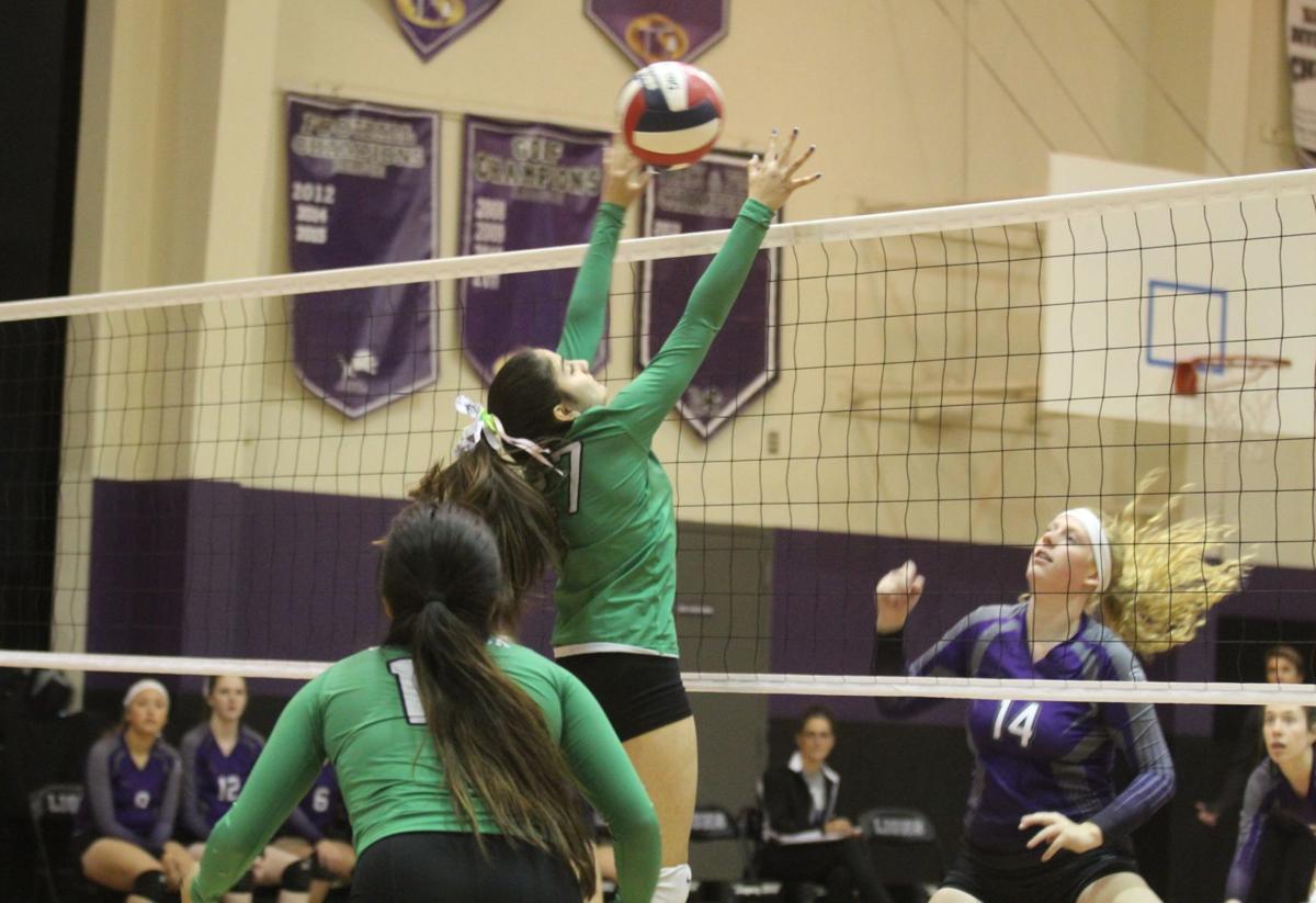 Calistoga High volleyball