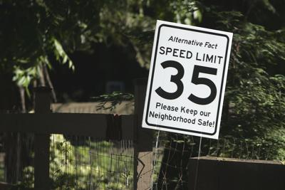 Fake Speed Limit Signs (copy) (copy)