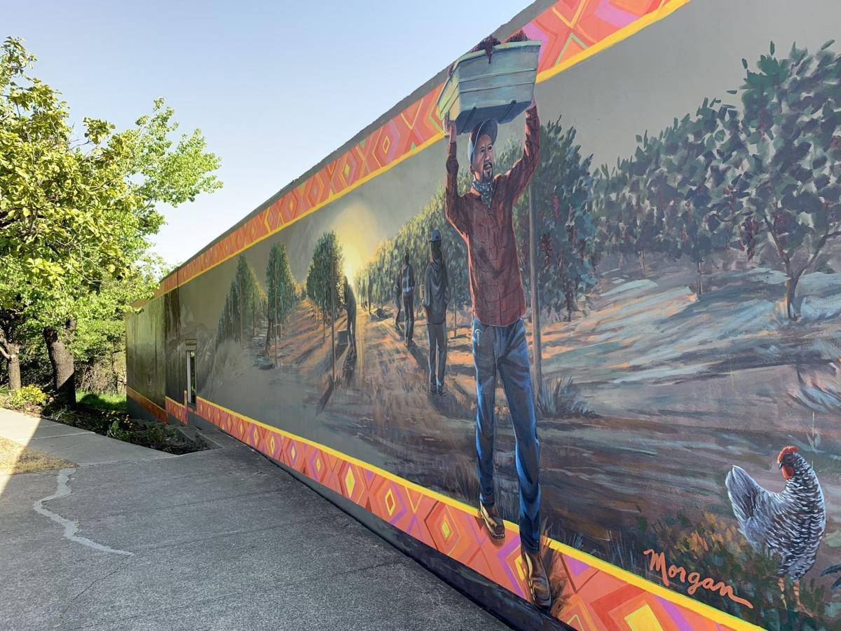 A mural by Morgan Bricca at 807 Soscol Ave.