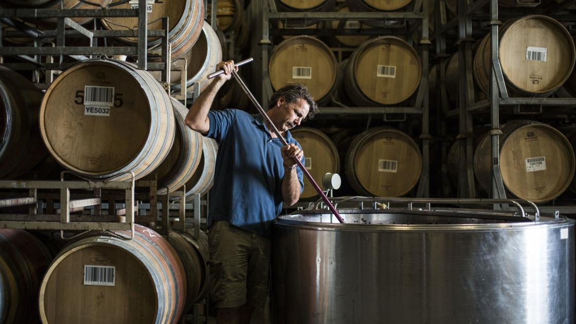 Not a Stranger in a Strange Land: The map of Chris Carpenter's wine world reads more like an atlas