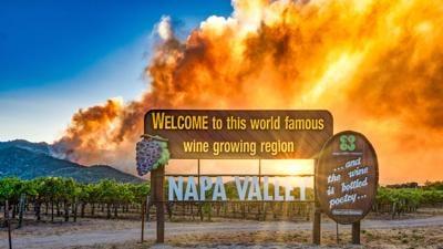 No. 5 wine industry