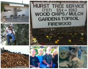 Hurst Firewood And Tree Service Collage