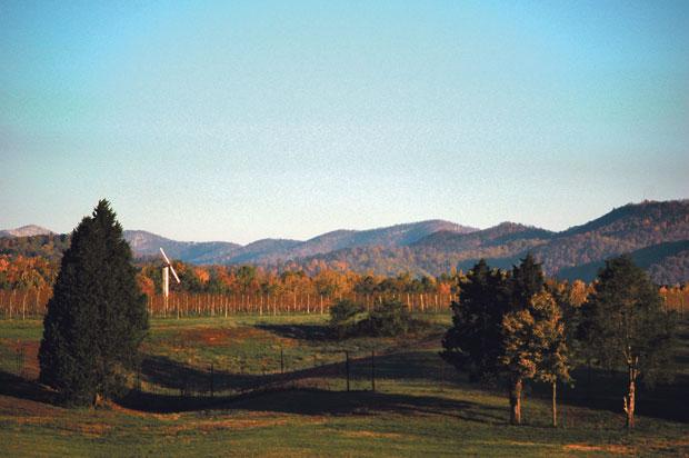 Early Mountain Vineyards