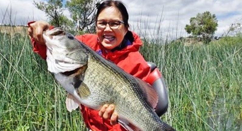The fishing report bodega bay expecting salmon in coming for Bodega bay fishing reports